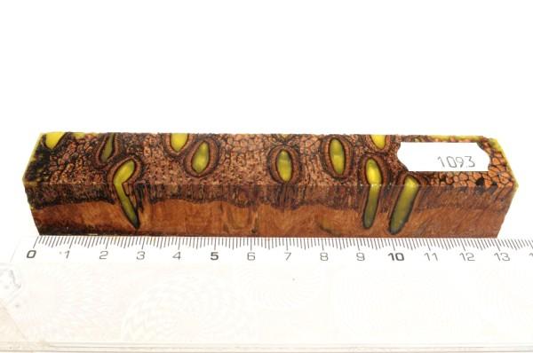Banksiazapfen in Kunstharz für Ringe